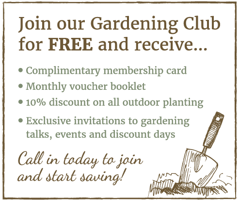 Free Gardening Club at Stratford Garden Centre