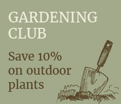 Gardening Club at Stratford Garden Centre